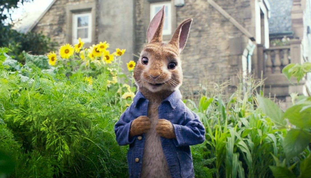 ZZ Peter Rabbit (PG) 3