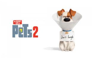 The Secret Life of Pets 2 (U)