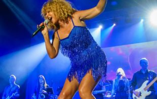 The Tina Turner Experience 1